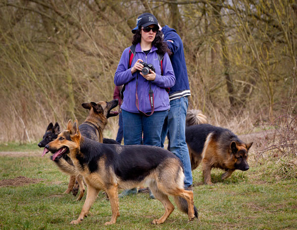 volunteers at a gsdr walk