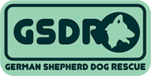 UK German Shepherd Dog Rescue Rehome GSDS