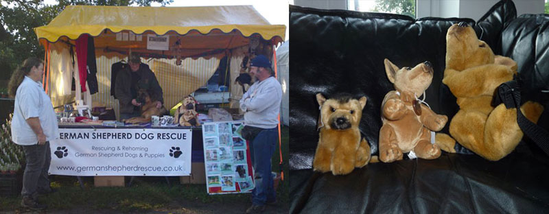 the merchandise stand to help raise money for german shepherds